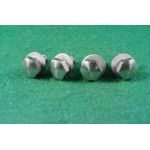 4 number plate fixing screws