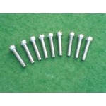 timing cover screw set (GS & B31)